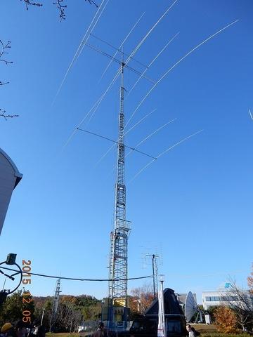 DSCN8434.jpg