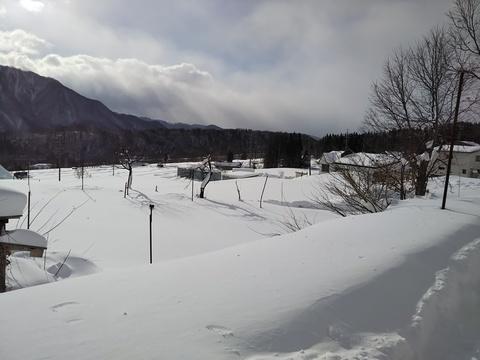朝の雪景色.JPG